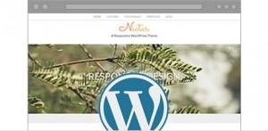Gazduire de mare viteza Wordpress